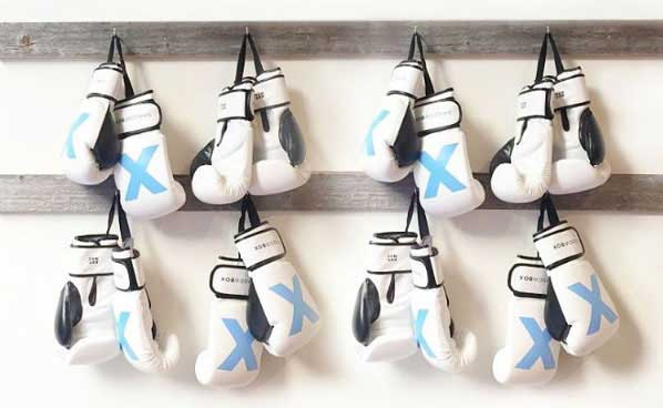 Vapor Fresh Boxing Glove Dogs